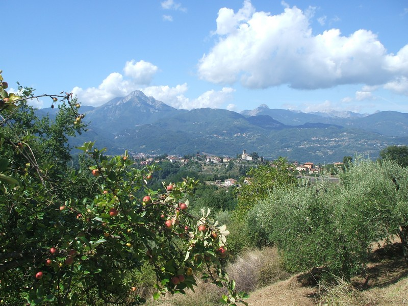 Barga and Apuane Alps